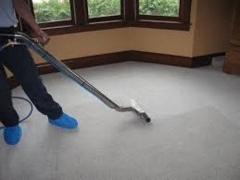 carpet cleaning guy working